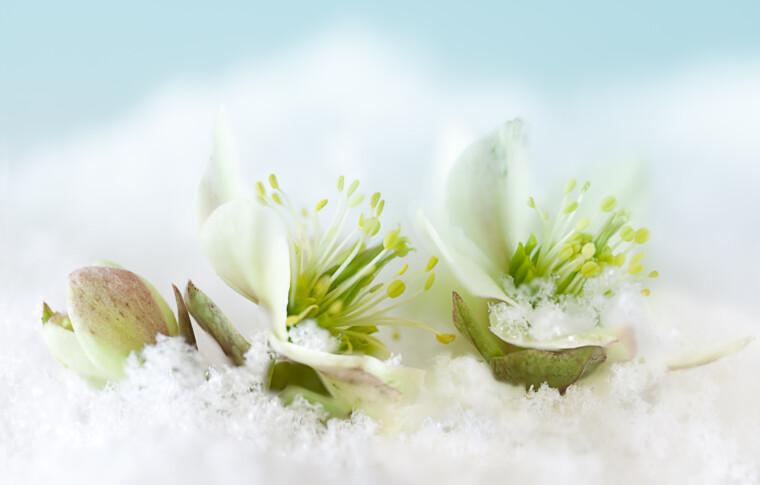 Het thema voor de winter is BLIJF WARM en dit is waarom: